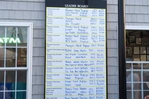 2015 BFC Final Leaderboard