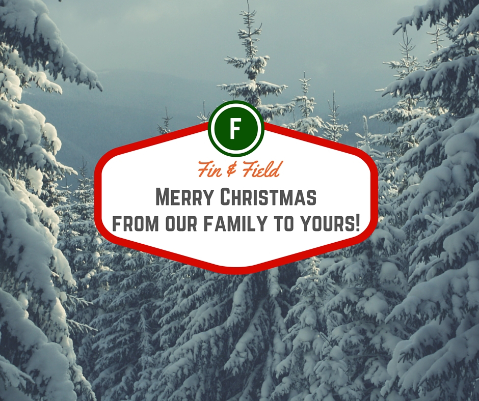 Merry Christmas from out family to yours! copy