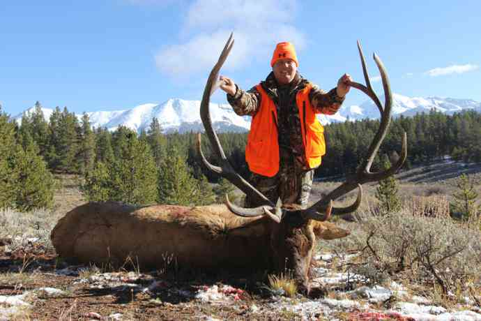 AEI Guide and Outfitting - Elk