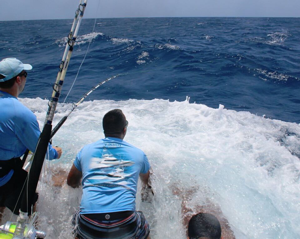 Fly on deck helping a client flight a blue marlin