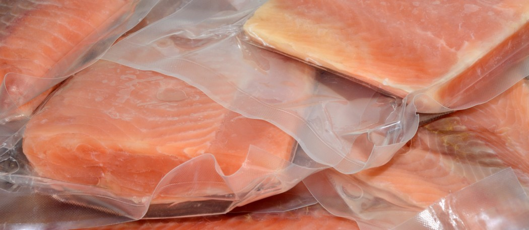 Frozen vacuum packed Salmon fillets in plastic ready to be packed in an insulated bag for a flight on an airplane