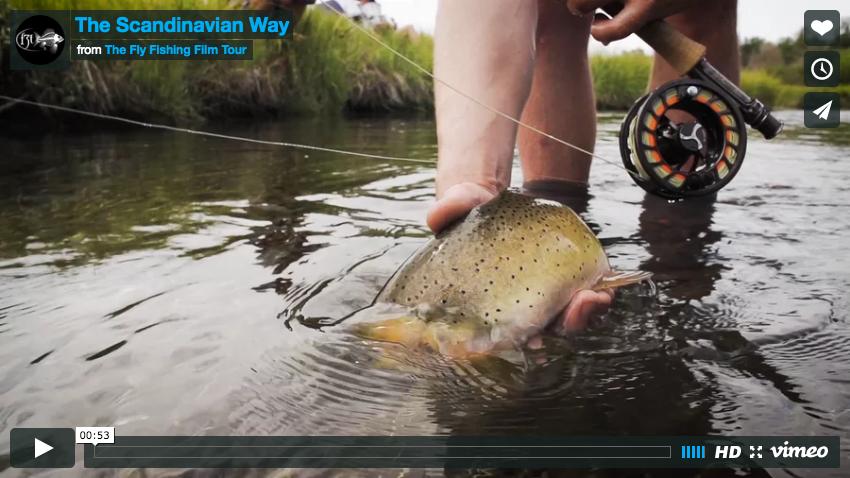 the Scandinavian way fly fishing film cover