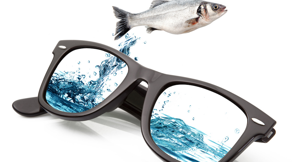 polarized sunglasses see fish better and better contrast for shooting