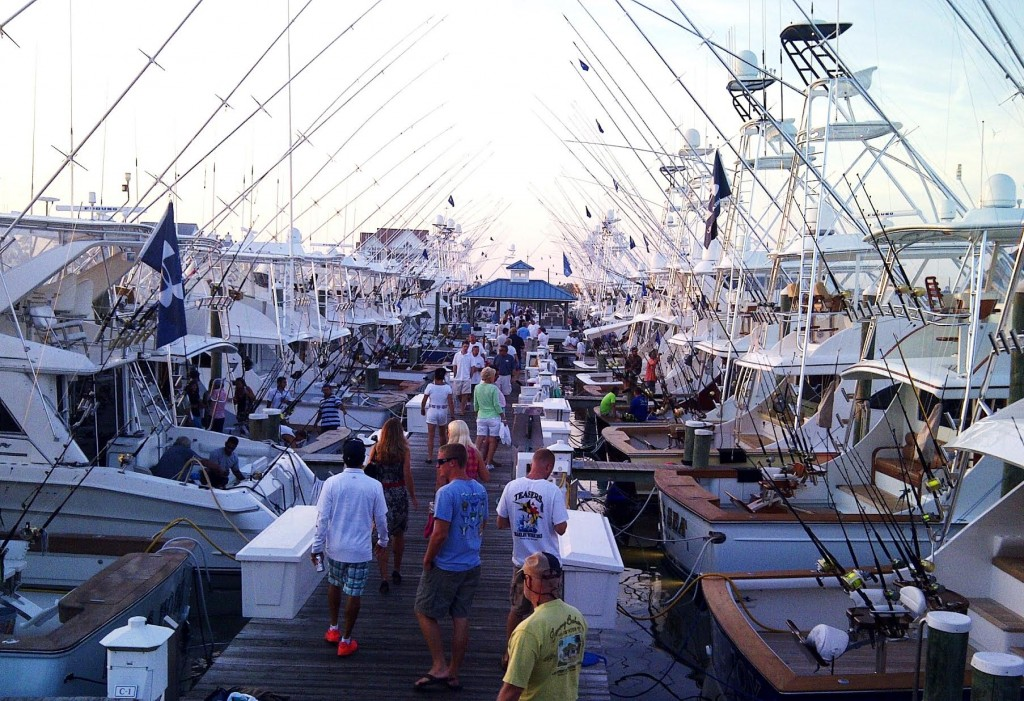 white marlin open dock scene