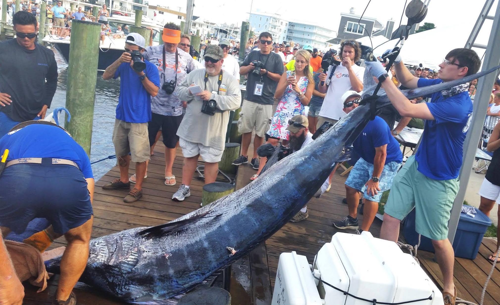 2016 White Marlin Open: The World's Largest Billfish Tournament