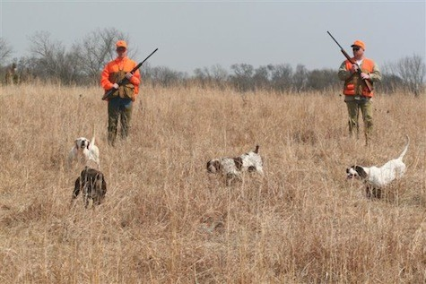 M&M hunting preserve and sporting clays pheasant hun under $500