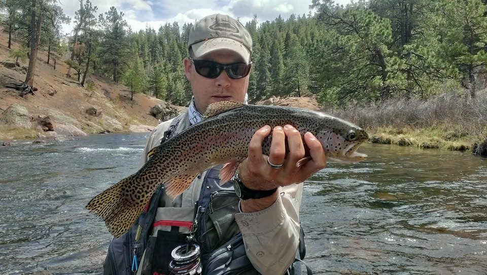 Paul Bourcq, our Most Interesting Sportsman in the World, with a nice fly caught rainbow trout