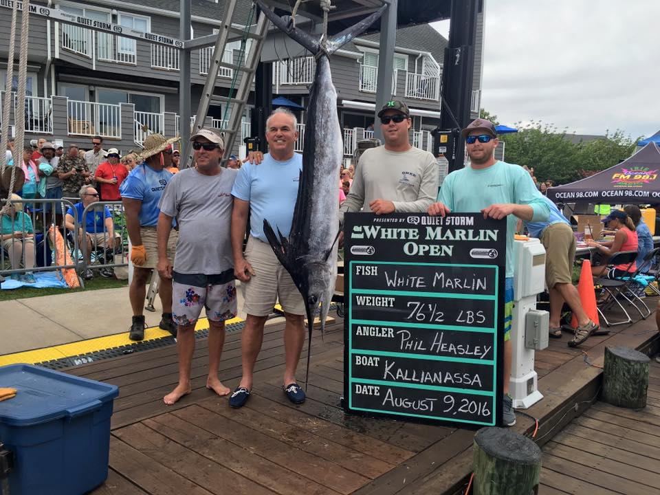 possible record setting white marlin for largest fish payout ever