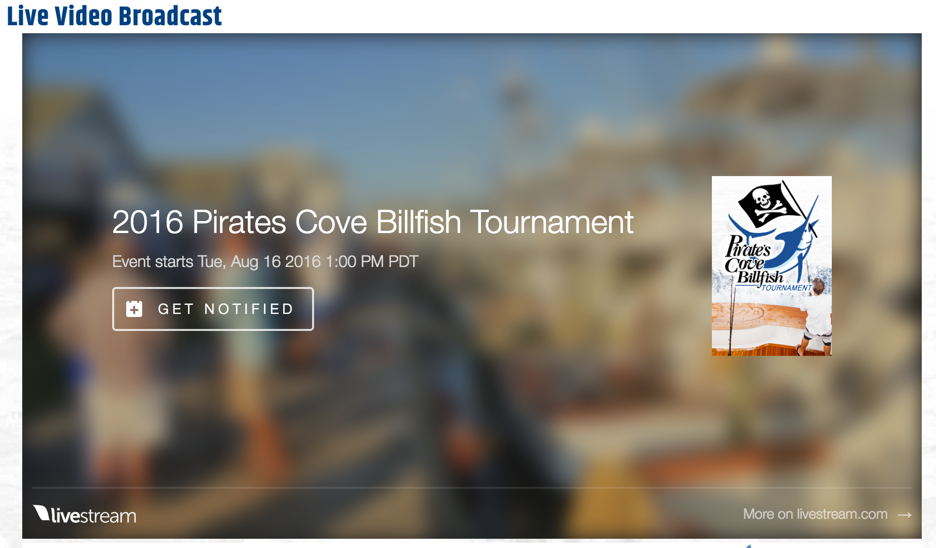pirates cove billfish tournament live stream