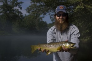 Asheville Fly Fishing Company brown trout