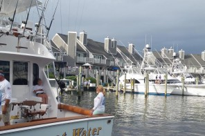 the docks at the white marlin open