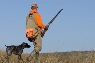 Hunting with dog