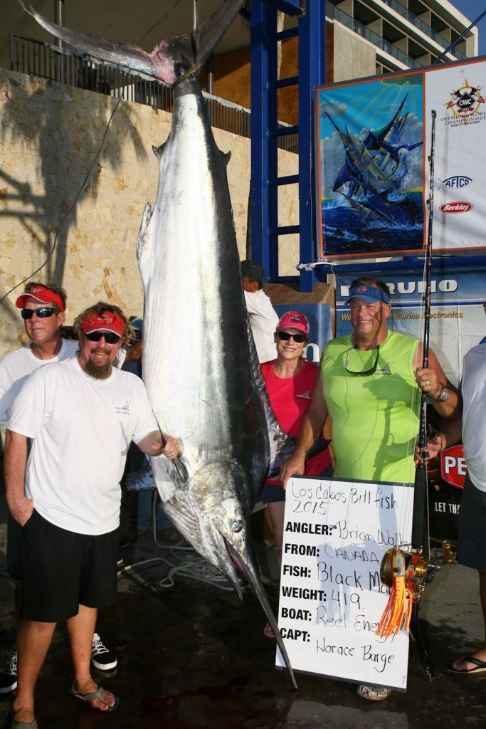 winning black marlin at the los cabos billfish tournament