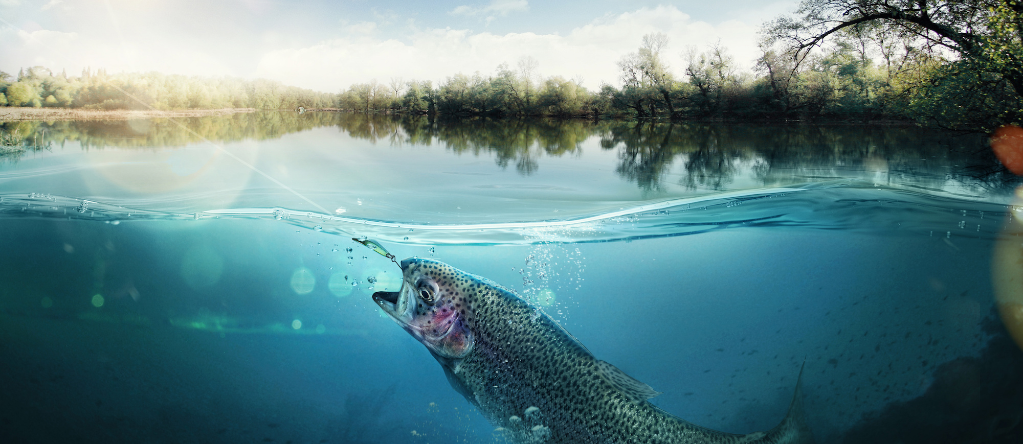 10 fishing tips for beginners fin and field blog for Take me fishing lake locator