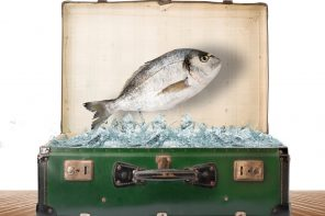 fishing and hunting packing essentials
