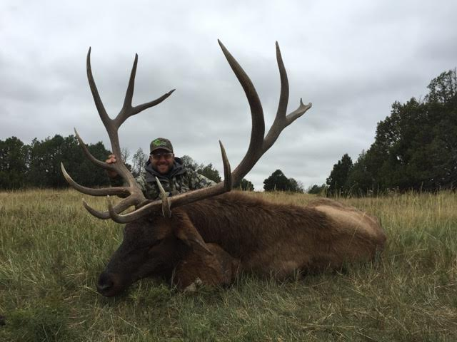 trophy bull elk at new mexico trophy hunt