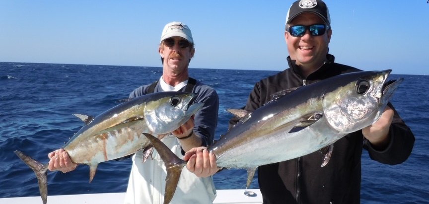 south paw fishing charters tuna fishing