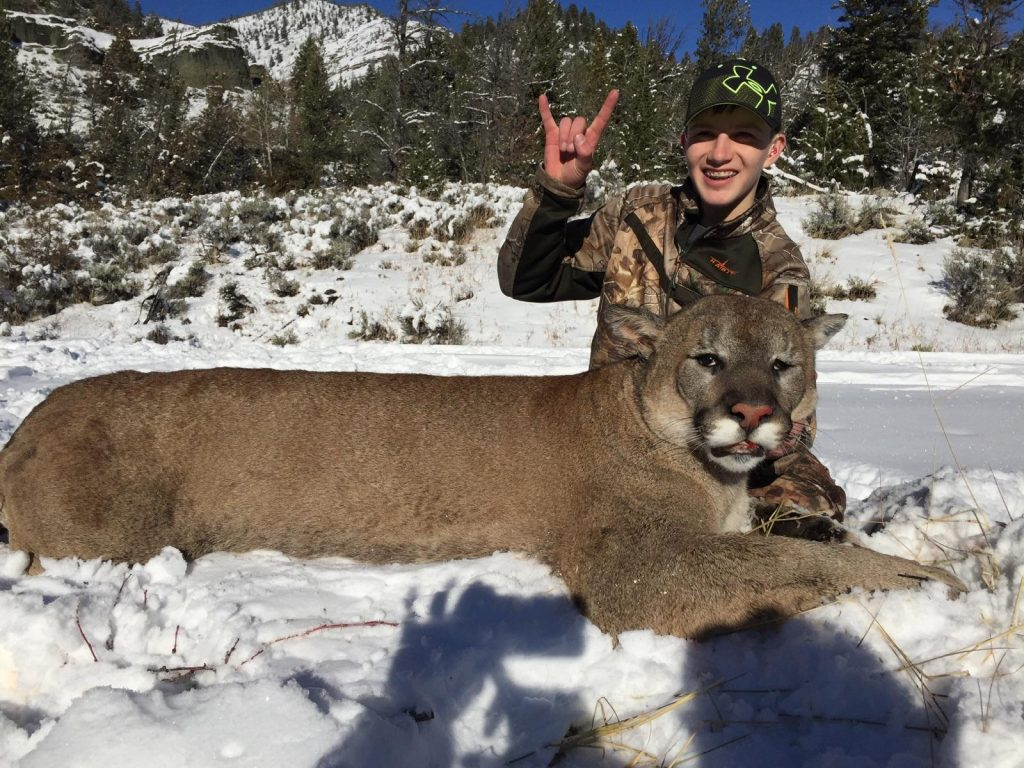 Wood River Ranch Mountain Lion Hunts