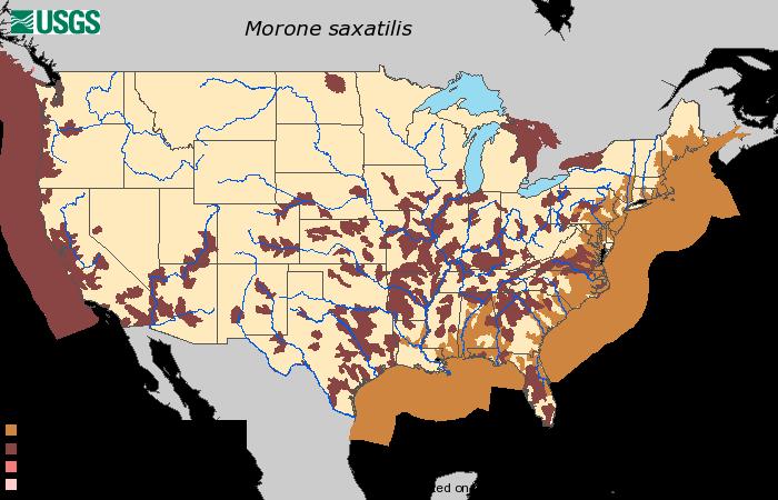 Striper Fishing Map