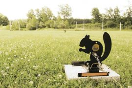 Crosman All-American Field Target Championship Registration Now Open