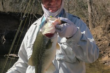 Midwest Finesse Fishing: February 2017