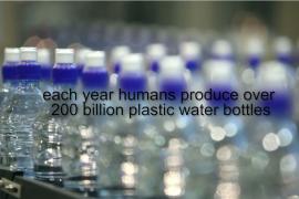 Single Use Water Bottles