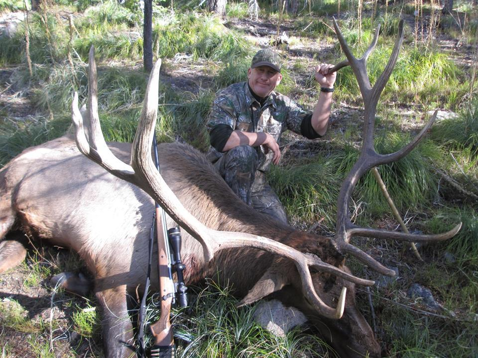 Elk with Elk Springs Outfitters