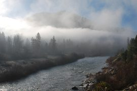 200 Miles of West Coast Salmon Fishing Shuttered
