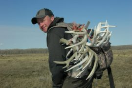 5 Hot Locations to Find More Shed Antlers