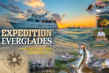 Expedition Everglades