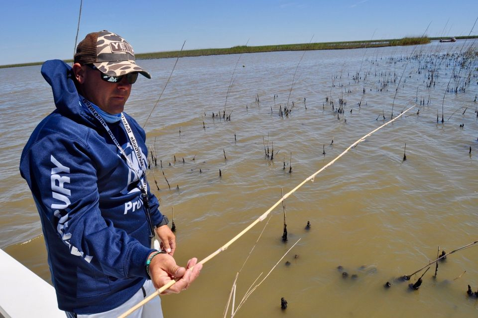 Invasive Aphids are Destroying the Best Redfish Marshes on the Planet