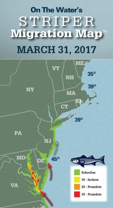 Striper Migration Map – March 31, 2017