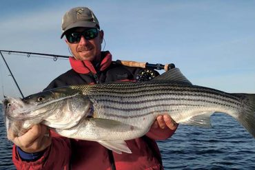 Fly Fishing For Big Stripers