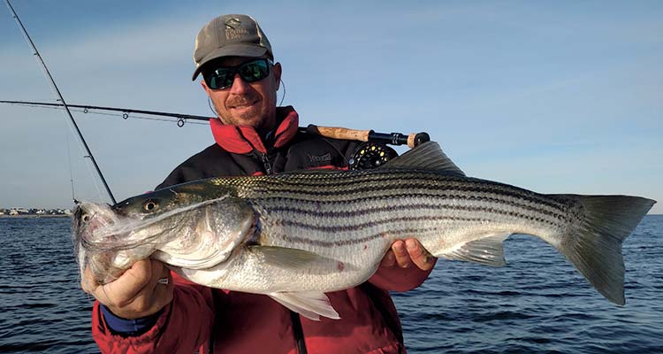How to fly fish for big stripers fin and field blog for How to fly fish for bass