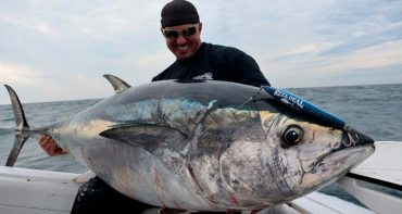 National Marine Fisheries Service Ups Giant Bluefin Tuna Limit