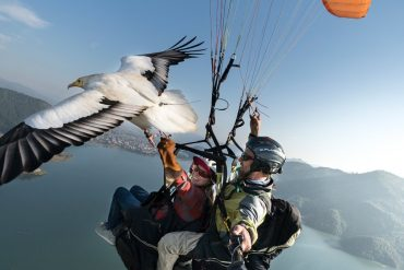Parahawking Is the Closest You Can Get to Being a Bird