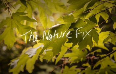 The Nature Fix: Closing the Bravery Gap