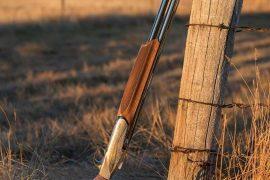 Field Test: Benelli 828U Shotgun for Ducks in Uruguay