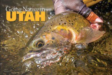 Going Native in Utah