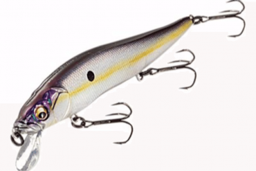 Top Gift Ideas For Your Fishing Dad