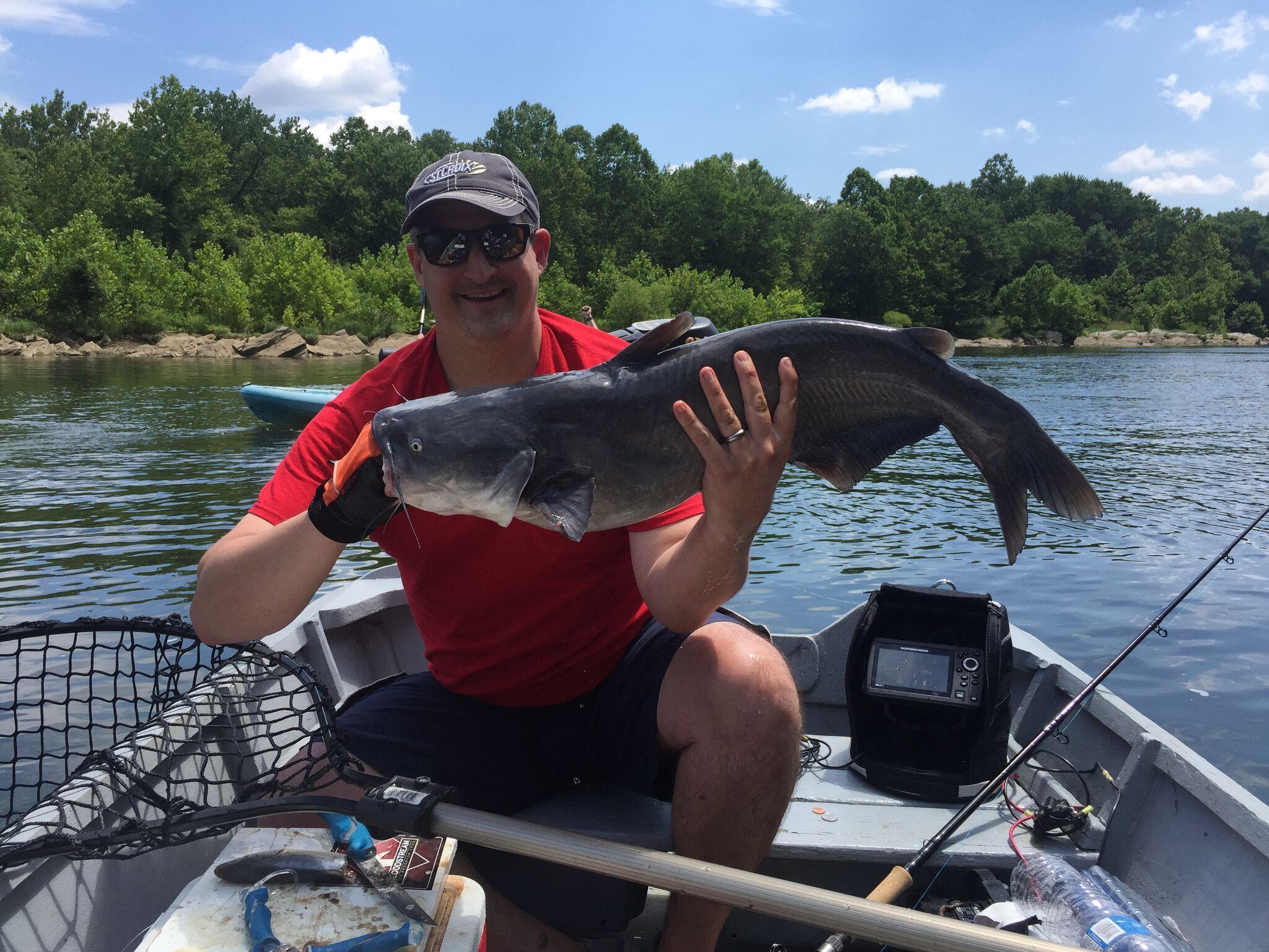 Catfishing the Capital