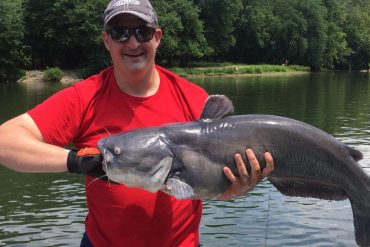 Blue catfishing the Capital