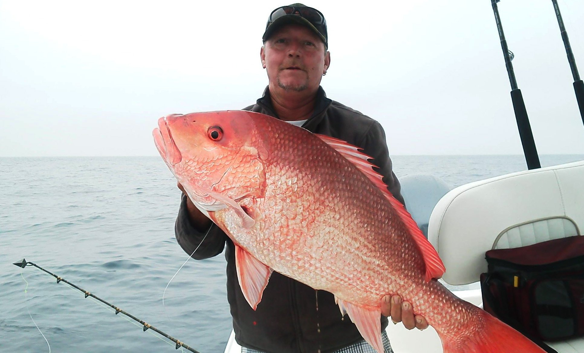 Provide your input on red snapper and cobia fin and for Red snapper fishing