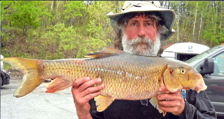Two new vermont state record fish caught fin and field blog for Vermont state fish