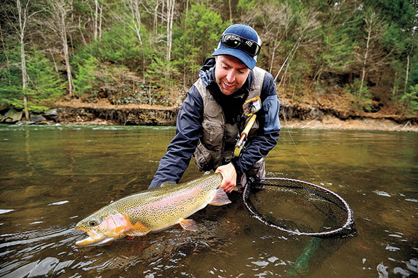 The importance of inch worms fin and field blog for Eastern fly fishing magazine