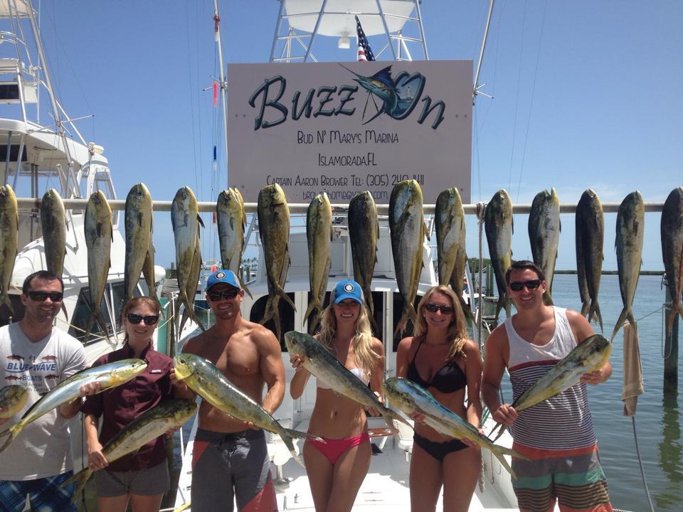 Islamorada Fishing with Buzz On