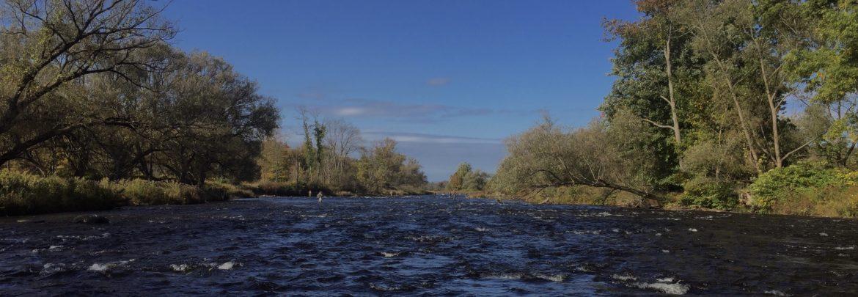 Douglaston Salmon Run