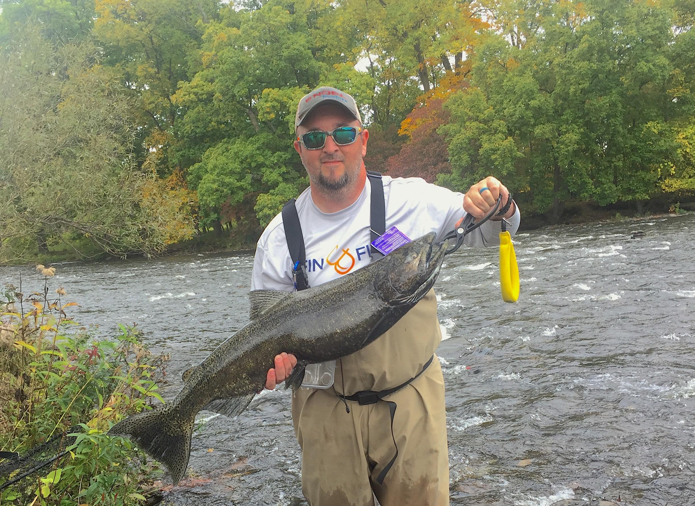 Salmon on the Douglaston Salmon Run
