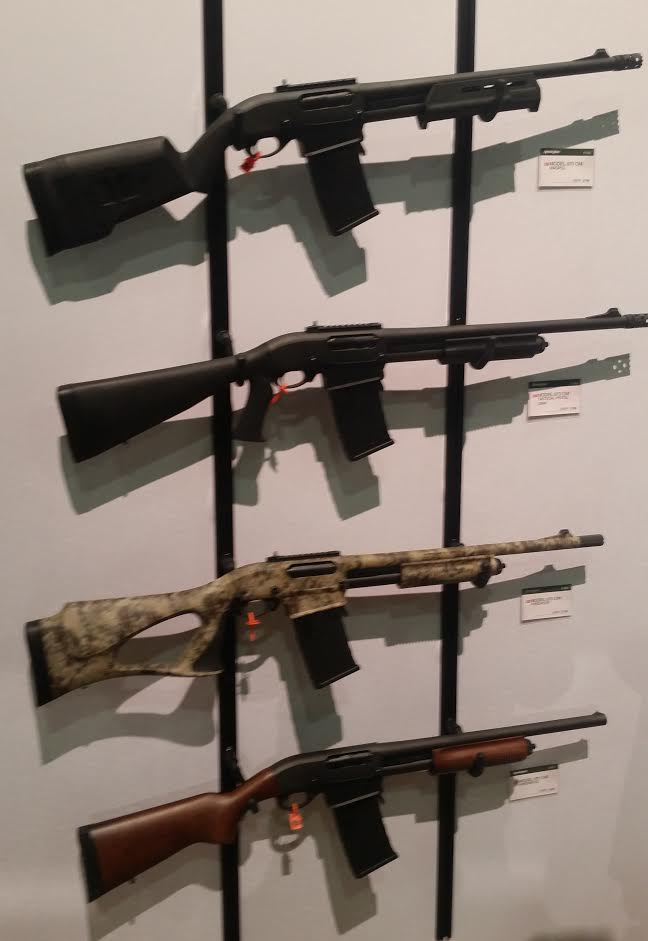 870 DM Variants